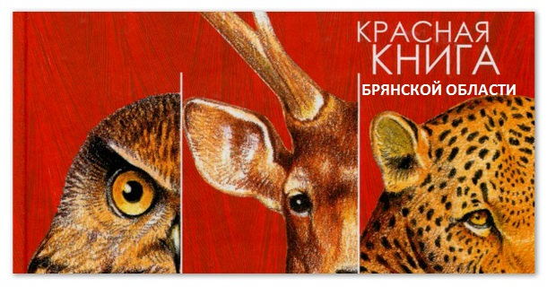 Красная книга Брянской области